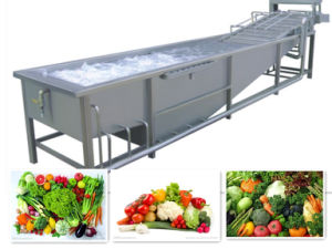 Hot Sale High Quality Fruit Washing Machine pictures & photos