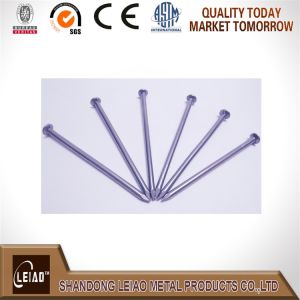 China Common Wire Nails Factory pictures & photos