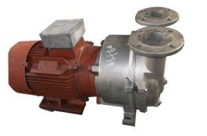 Liquid Ring Pump Used for Vacuum Degassing Industry pictures & photos