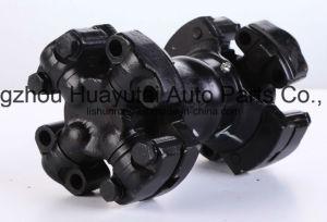 Permalube Universal Joint, 5-6106xpl, 5-7105xpl, 5-8105xpl, 5-9011xpl, 5-9017xpl pictures & photos