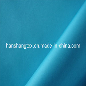 210T Polyester Pongee (HS-C2036)