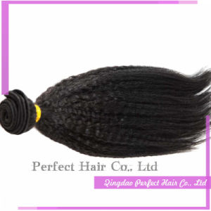 Best Human Hair Products Human Yaki Hair Womens Toupee pictures & photos