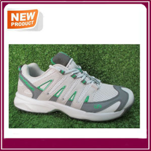Sport Shoes Cricket Shoes Wholesale pictures & photos