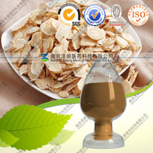 High Quality 100% Natural Astragalus Extract Astragaloside IV pictures & photos