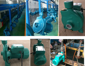 0.5HP/1HP/2HP Cpm Electric Centrifugal Peripheral Water Pump with Ce (CPM130/CPM158) pictures & photos