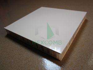 PP Honeycomb FRP Composite Panels (PPFRP01)