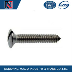 Slotted Countersunk Head Self Tapping Screws pictures & photos