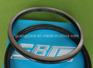 Floating Oil Seal Group 17m-27-00102 pictures & photos