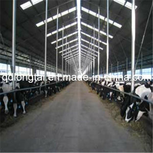 Metal Cattle Shed Made of Light Steel Structure pictures & photos