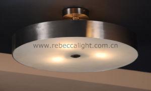 Hotel Decorative Indoor Steel Ceiling Light pictures & photos