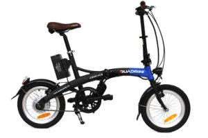 Italian Manufacturer Folding Electric Bicycle (TDN12Z)