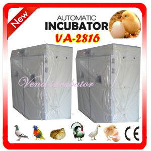 Best Quality of High Hatching Rate and Full Automatic Hatcher (VA-2816) pictures & photos
