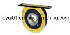 Center Support Bearing for Volvo R-3064 pictures & photos