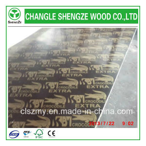Professional Manufactured 7mm Logo Film Faced Plywood pictures & photos