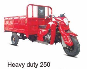 Heavy Duty Tricycle 250cc, 300cc, 350cc, 450cc pictures & photos
