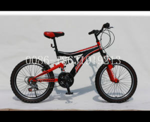 "20"" Steel Frame Bicycle Mountain Bike (HC-MTB-2093) pictures & photos"