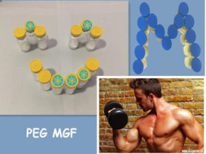 Fast Muscle Recovery Igf-1ec Human Peptides Peg Mgf with Longer Half - Life pictures & photos