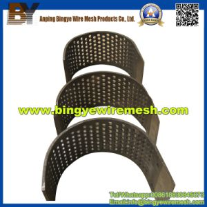 Low Carbon Steel Perforated Metal Mesh for Design pictures & photos