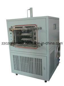 Pilot Freeze Dryer (LGJ-50F top press) pictures & photos