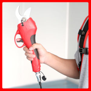Koham Tools Horticulture Cutting Lithium-Ion Pruners pictures & photos