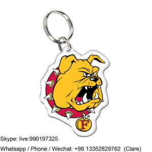 Customized Acrylic Soild keychain Promotion Gift pictures & photos