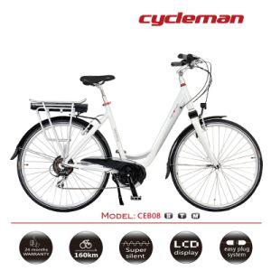 8fun Middle Motor Electric Bike