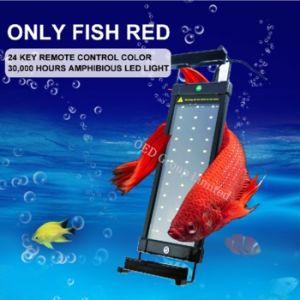 2017 Dimmable RGB Aquarium LED Lights Ultra-Thin 6W 28cm 11W 50cm Bracket Aquarium Lightings with Remote Controller pictures & photos