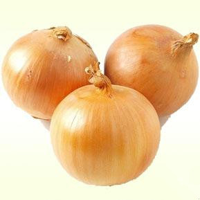 2016 Fresh Onion Exporter /Seller/Distributor From China pictures & photos