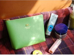 Lady PU Cosmetic Bag (YLD010-16)