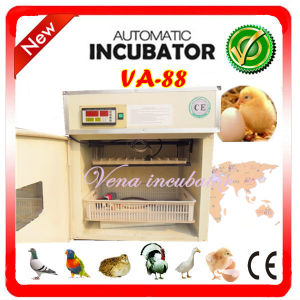 Small Industrial Full Digital-Automatic Incubator and Chicken Eggs Incubator (VA-88) pictures & photos