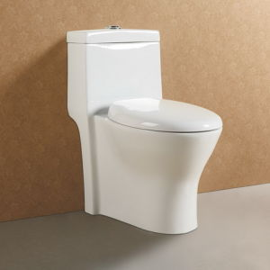 Dual Flush Washdown Ceramic Water Closet