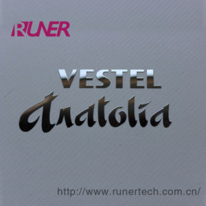 Gauzy Electroformed Nickell Badge for Digital Product pictures & photos