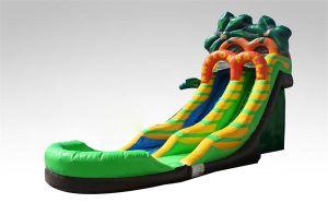 Water Slide Inflatable, Water Slide Games Inflatable, Inflatable Water Slide China pictures & photos