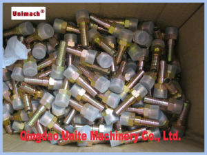 Hydraulic Hose British Fittings with BSPT Thread (13011) pictures & photos
