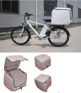 Fiberglass Rear Box
