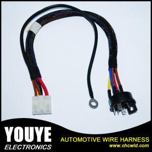 2016 Rohs/ Reach/ ISO9001 Automotive Wiring Harness pictures & photos