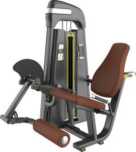 Gym Machine Leg Extension China Cheaper Fitness Equipment