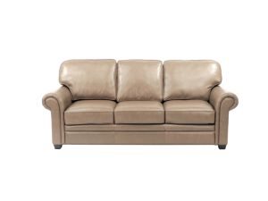 Modern Genuine Leather Sofa for Living Room Furniture pictures & photos