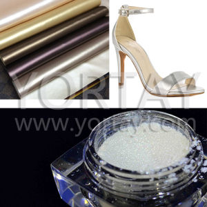Silverwhite Pearlescent Pigment/Shimmer Pearl Effect Powder for Leather (YT1011)