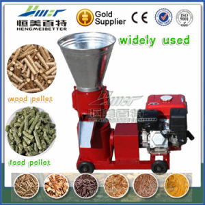Housekeeping Money China Factory Rice Husk Rice Husk Pelletizing Mill pictures & photos