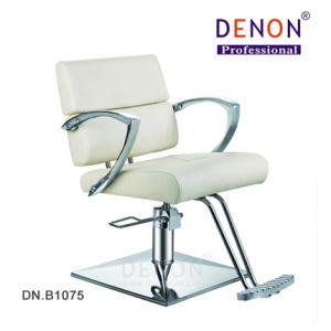 Styling Chair Hair Salon Furniture Beauty Salon Equipment (DN. B1075) pictures & photos