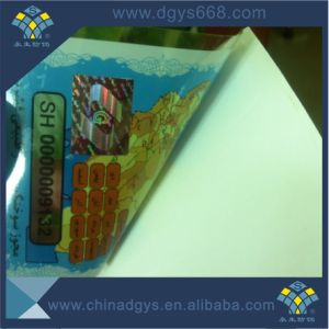 High Security Car Windscreen Sticker with Hologram pictures & photos