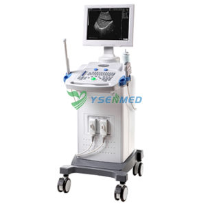 Medical Trolley 2D B/W Ultrasound pictures & photos