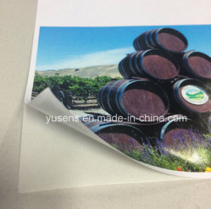 A4/A3/Roll Glossy Cast-Coated Inkjet Photo Paper Sticker pictures & photos