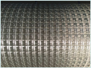 Warp Knitted Fiberglass Geogrid with Tensile Strength 50kn pictures & photos