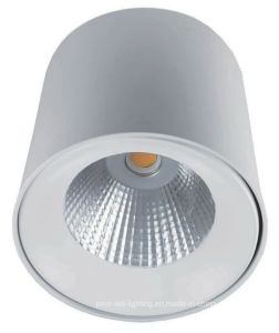 Dual White 6W LED Ceiling Light (LED5630) pictures & photos