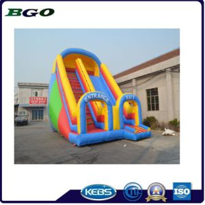 Inflatable Kids Toys Playground, Outdoor Inflatable Functy pictures & photos