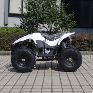 Attractive Type Cheaper 4 Wheeler Kids 50cc Quad ATV (A05) pictures & photos
