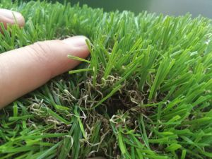 Artificial Grass for Backyard Garden Decoration Without Heavy Metals pictures & photos