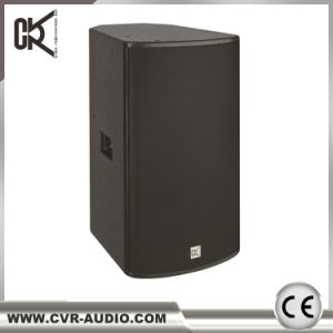 12 Inch Karaoke Loudspeaker DJ Sound System pictures & photos